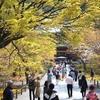 【朝京都】桜の時期の蹴上インクライン・南禅寺おすすめ朝ルート【南禅寺~祇園白川編】