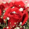 婚約指輪・結婚指輪のブランド巡り