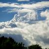 雲と、カモの名前を覚えよう