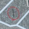 瓦屋根(台風21号被害)の調査