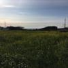 2020.2.7 PART Ⅳ(最終章)瀬戸内と四国一周そして東海道の旅(自転車日本一周174日目)