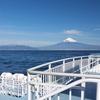 海に浮かぶ富士を望む 駿河湾フェリー