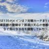 【RISE】RISE135のメインは?対戦カードまとめ!篠塚辰樹の復帰は?那須川天心の参戦は?など気になる点も調査してみた。