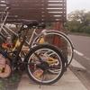 Photo No.386 / ファミリー