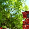 6月の京都旅行 2泊3日 3日め
