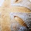 今夜はパンの夢を見ると思います。