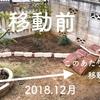 庭の改造!庭木を抜いて移植。シマトネリコの強靭な復活力。