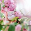 高音質でおしゃれなワイヤレスイヤホン♡「Sudio(スーディオ)」のTOLV(トルブ)