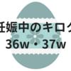 妊娠中のキロク【36w・37w】