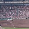 甲子園高校野球交流試合、開幕。