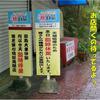 【わんこと旅】 龍宮神社 ≪鹿児島県≫