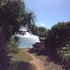 沖縄に行ってきた【小浜島・黒島・鳩間島】(その3)