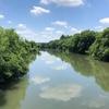荒川を歩く その7 〈左岸〉 上江橋(さいたま西)から太郎右衛門橋(桶川)