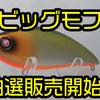 【OBASSLIVE】モラモラシェイプのフルサイズワーミングバイブ「ビッグモフ」通販抽選販売開始!