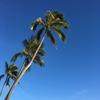 初ハワイのオススメ〜おみやげをリーズナブルに買う編