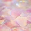 横浜山手西洋館『バレンタイン装飾』をMACRO APO-LANTHAR 110mmで撮ってみた。