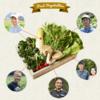 選んだ生産者から安心こだわり野菜を注文できる食材宅配ココノミ