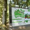 奥卯辰山公園のショウブさん・・