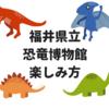 【徹底解説】福井県立恐竜博物館の楽しみ方。おすすめポイントを紹介します。