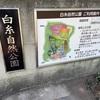 【富士宮市】白糸自然公園のオススメ情報をご紹介!!