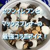 【セブンでマックスブレナーする!】ミントチョコチャンクアイスを食べてみた!