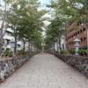 【鎌倉いいね】秋の気配と鶴岡八幡宮と私と。