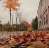 赤平市 秋色に染まっていた「こもれび通り」