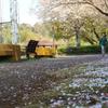 街かど探検隊が行く 桜と走る少女