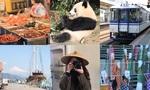 写真とブログで振り返る!2019年お出かけ・旅行♥