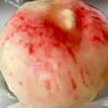 毎年恒例!菓子の家の夏限定メニュー「まるごと ももタルト」が絶品♡