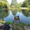 所沢航空記念公園の池(埼玉県所沢)