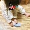 生活・運動面の成長 ー 娘2歳6ヶ月の成長記録 vol.1