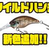 【EVERGREEN】バイト誘発型クランクベイト「ワイルドハンチ」に新色追加!