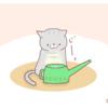 『猫動画が多くて人気な理由がわかりました。』【ネコ4コマ】