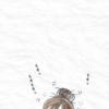 【今日は何の日?】ジジとババ 一コマ漫画 謝罪