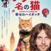映画「ボブという名の猫 幸せのハイタッチ」観賞レビュー