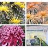 定番の菊花展