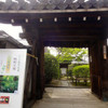 新緑の若々しい庭園 妙心寺大法院