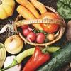 代謝の良い身体を作る