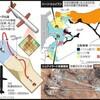トランプによるシリア攻撃の真相