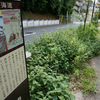相模国の旅のはじまり。品濃一里塚を通り戸塚宿へ - 旧東海道の旅(11)