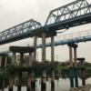 2020年06月14日クソ散歩 ~旧中川を北上~