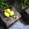 台風が来る前にコボちゃんスタンプラリーをコンプするために中井まで歩いて行った日曜日