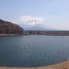 低空飛行ーチャレンジ富士五湖100km2019レポート3
