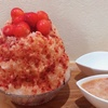 【かき氷】練乳をまとった手がきのふわふわ氷に感動。巣鴨のかき氷専門店「雪菓」の富士山の天然氷を使った贅沢かき氷