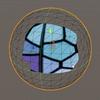 【Unity】カメラの正面ではないポリゴンを破棄するシェーダを導入する