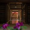 奈良県長谷寺のぼたんまつり。こんなに人が多い長谷寺は初めてかも。
