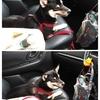 愛◯との危険なドライブ