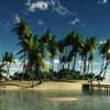 就活面接対策 ~無人島に一つだけ持っていけるとしたら、何を持っていきますか?~