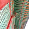 韓国の紅葉と昌徳宮と昌慶宮
